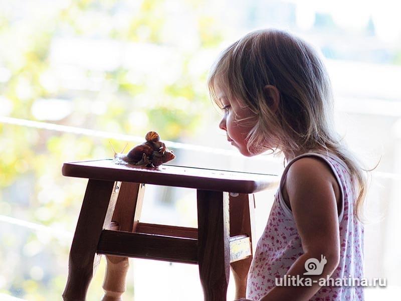 Ребенок играет с улиткой Ахатиной